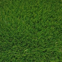 Sienna 39mm Grass